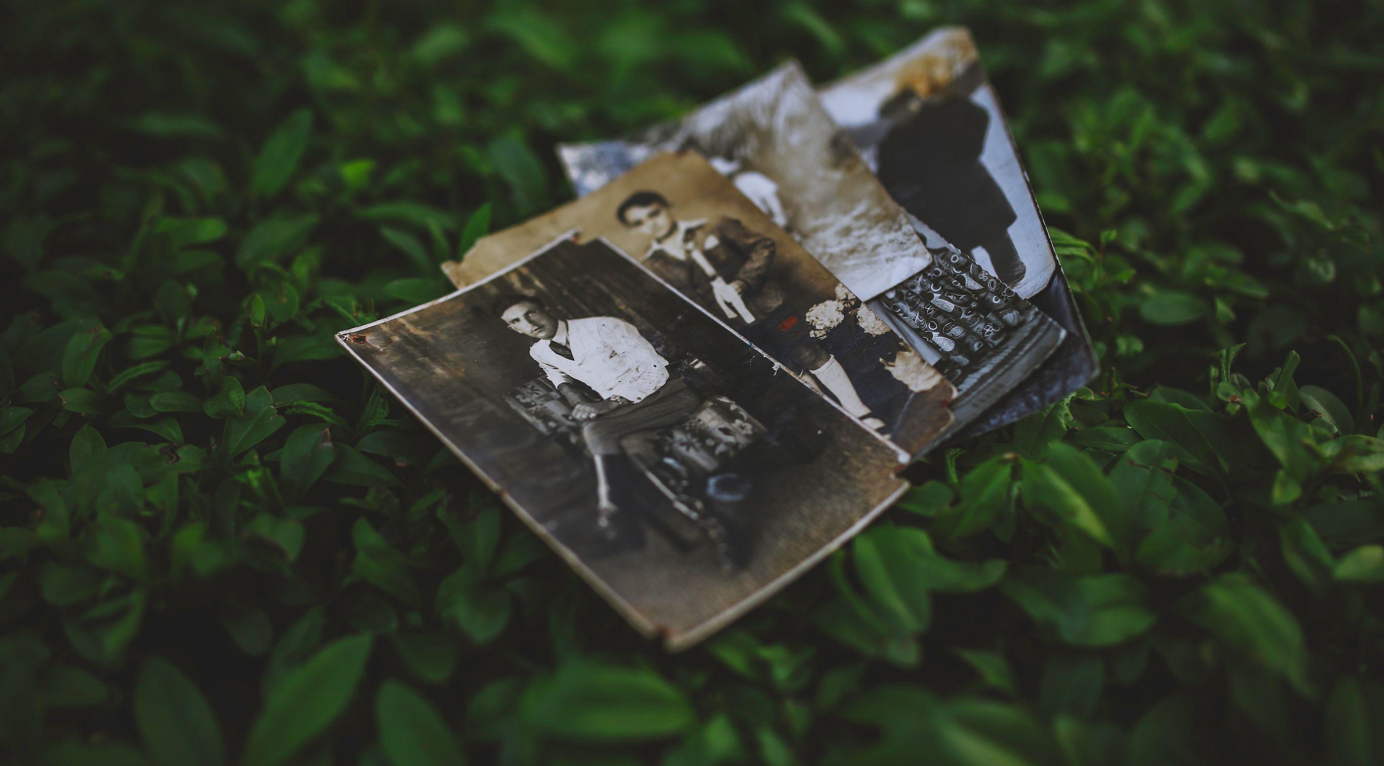 Kostenlos nutzbare Fotos