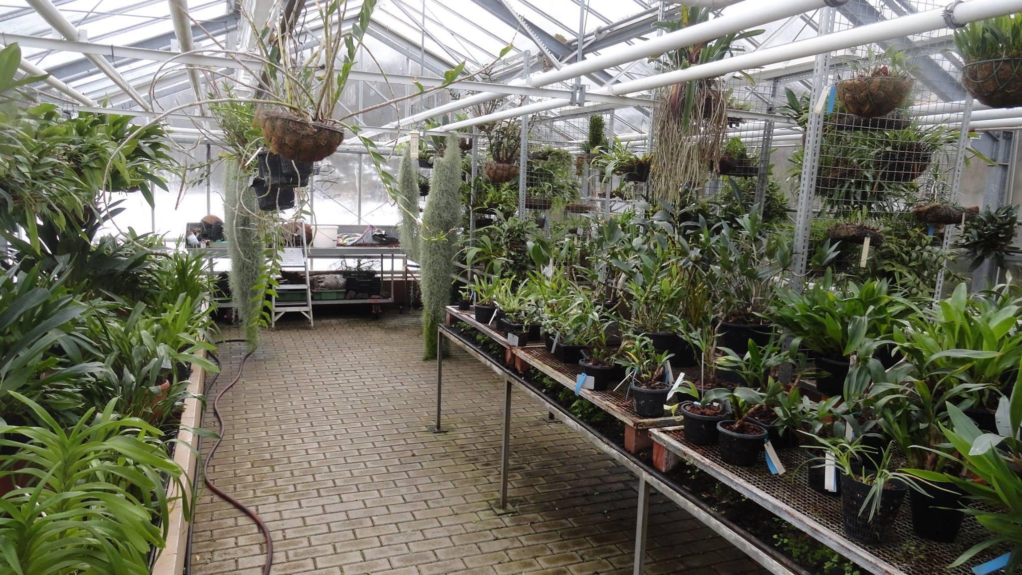 Botanischer Garten der Universität des Saarlandes