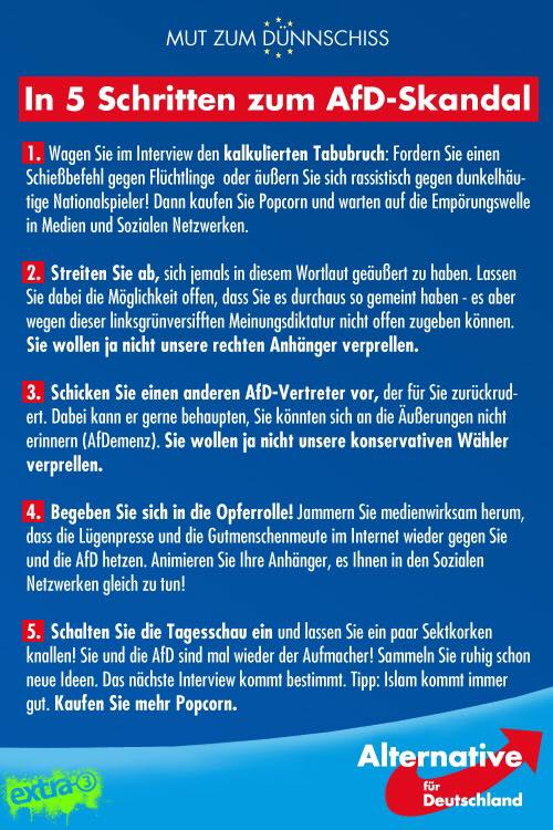 AfD-Skandal in 5 Schritten